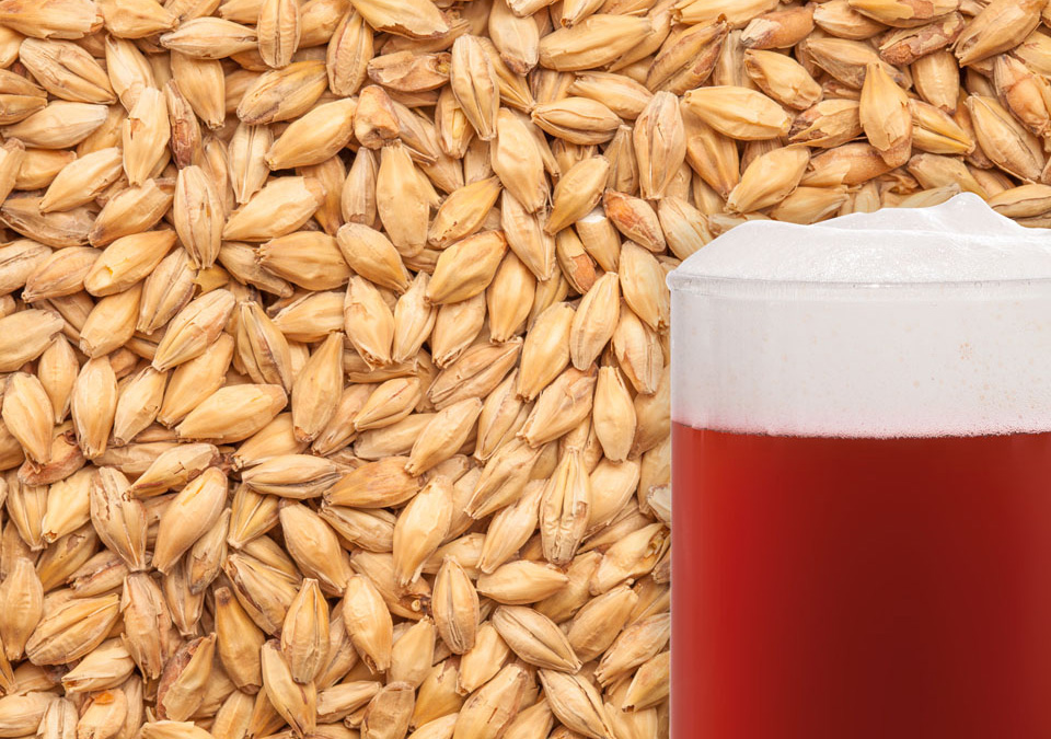 Viking Red Ale Malt 1kg Whole
