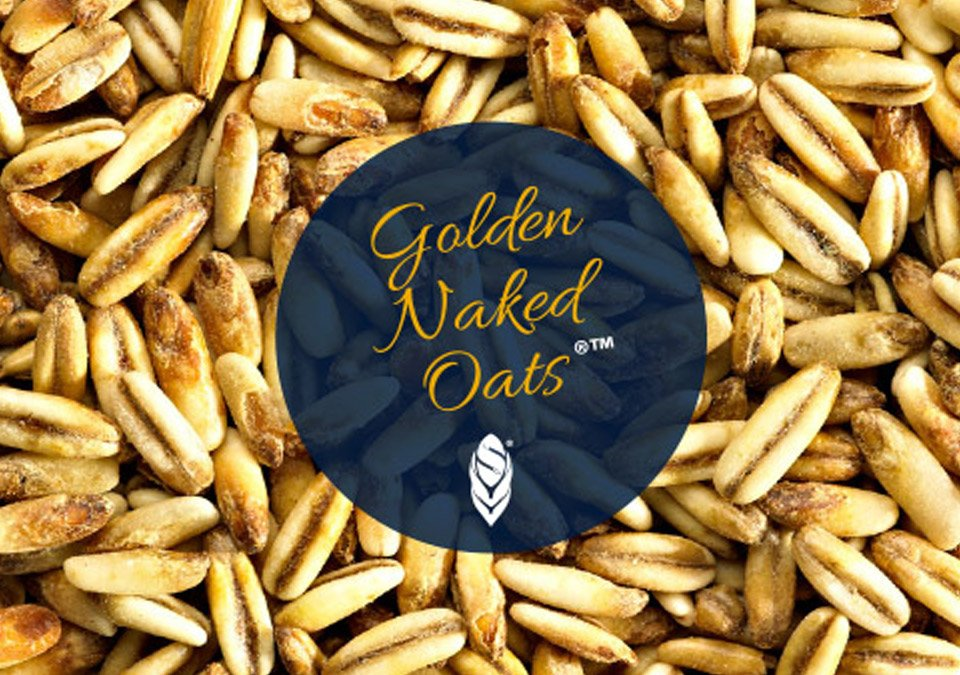 Simpsons Golden Naked Oats 500g
